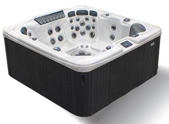 dynasty-spa-service